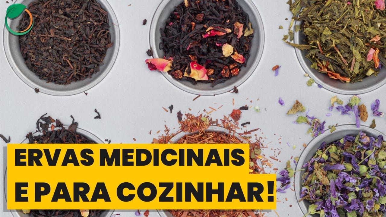 Conheça Ervas e Plantas com Uso Culinário e que Também Funcionam como Remédios Naturais!